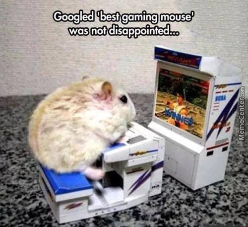 gaming-mouse_o_3705813.jpg.0f995d03125e30aba49db534f22d914d.jpg