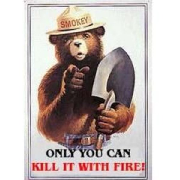 kill_it_with_fire_square.jpg.88745c43437cb4e34aae141174c1b428.jpg